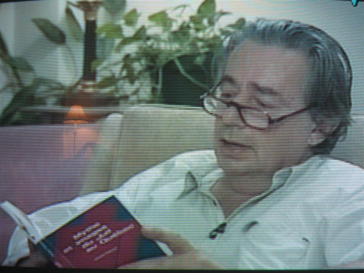 benny by mordecai richler essay My time at a hasidic boys' camp  in an essay, bilingualism and  barney's version by mordecai richler blindness by josé saramango.